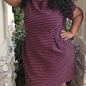 Talbots Dress 22W Pink Black Stripe Knit stretch